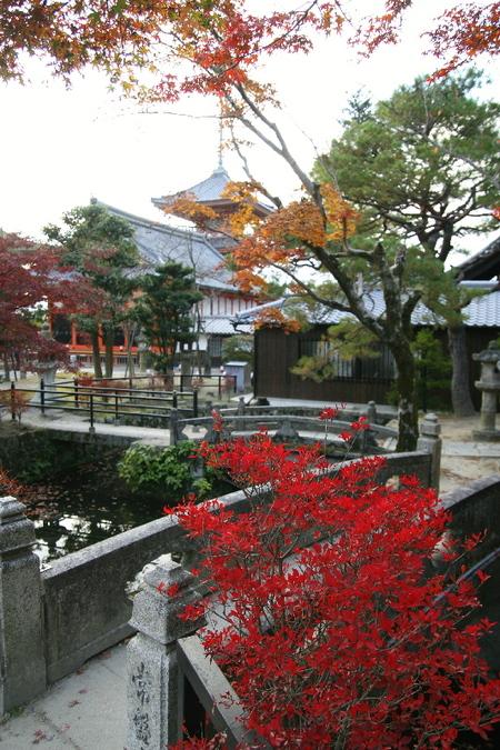 Kiyomizu0712085