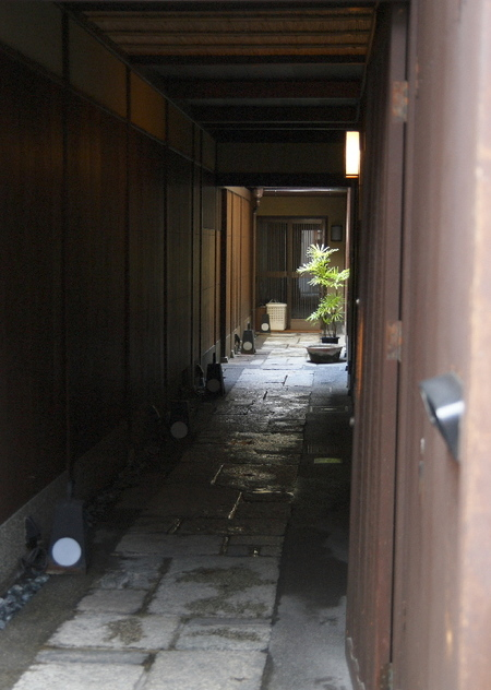 Koisurukyoto0802282