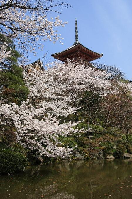 Kiyomizu0804116
