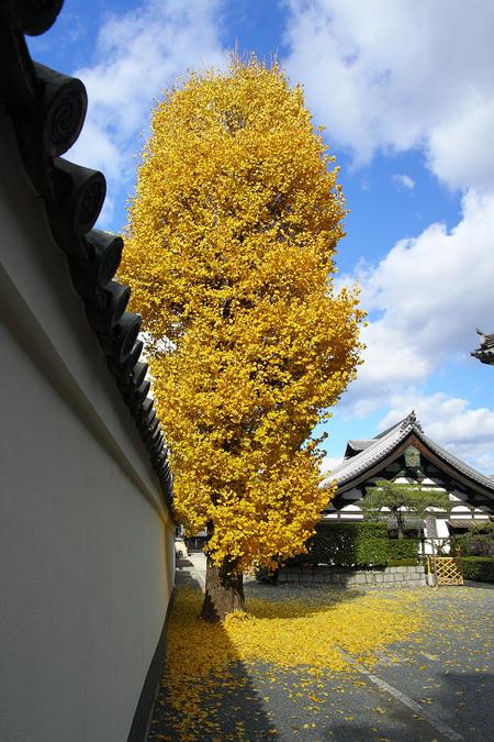 Honpouji08181