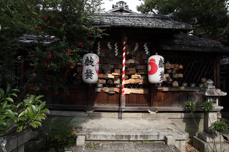 Sainokami0905252