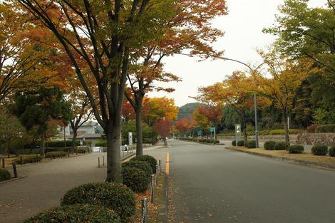Takaragaike0910272