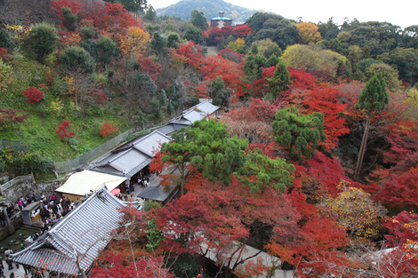 Kiyomizudera0912015