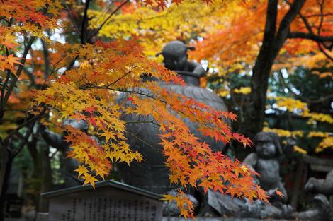 Kamigoryoujinjya0912052