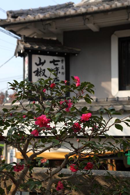 Higasiyama1001025