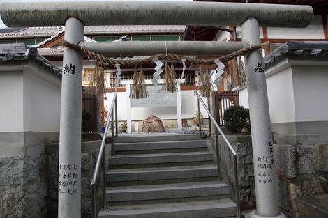 Ryomazaka1001142