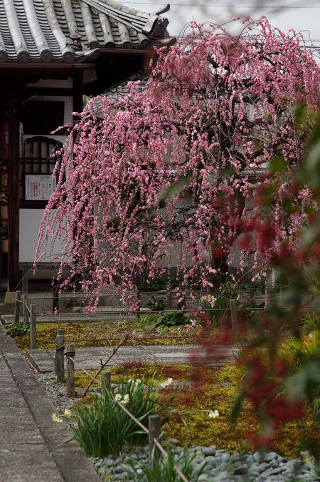 Yusyouji1003032