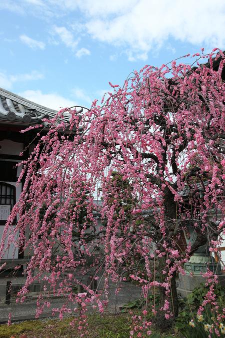 Yusyouji1003033