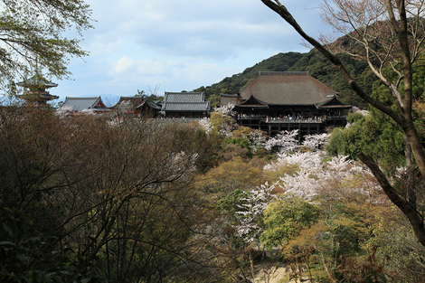 Kiyomizudera1004107