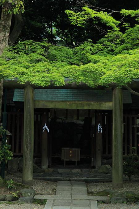 Yasakajinjya1005273