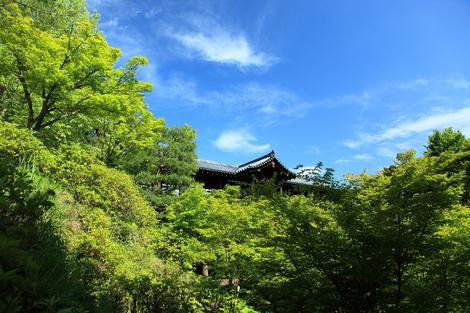 Toufukuji1006031