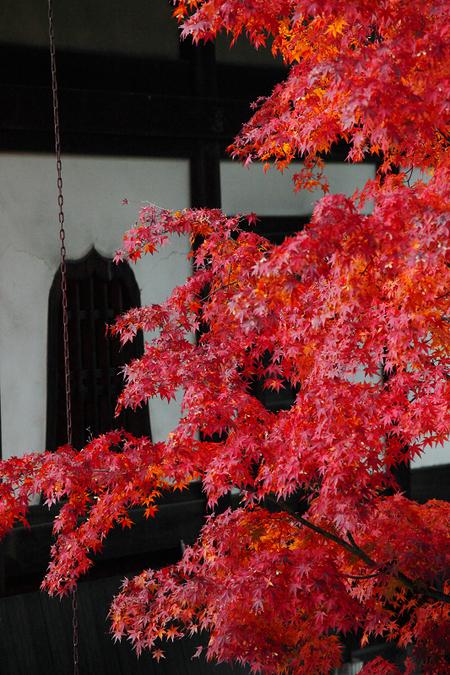 Kenninji1012136