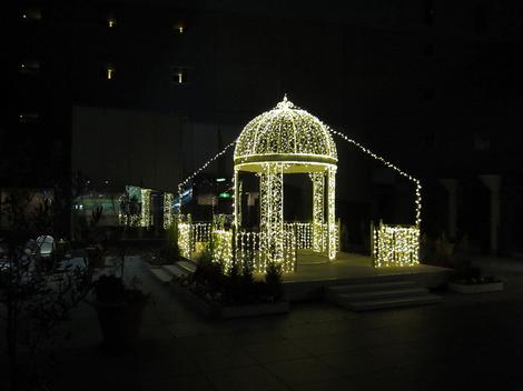 Kyotoeki1012185
