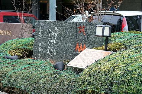 Fudoudou0606291