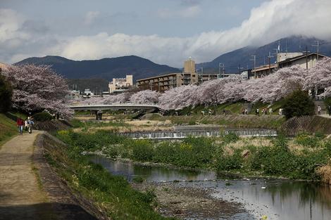 Takanogawas1104168