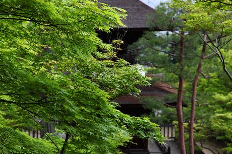 Jyoujyakkouji1105137