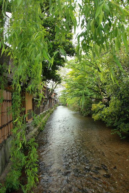 Gionsirakawa1105173