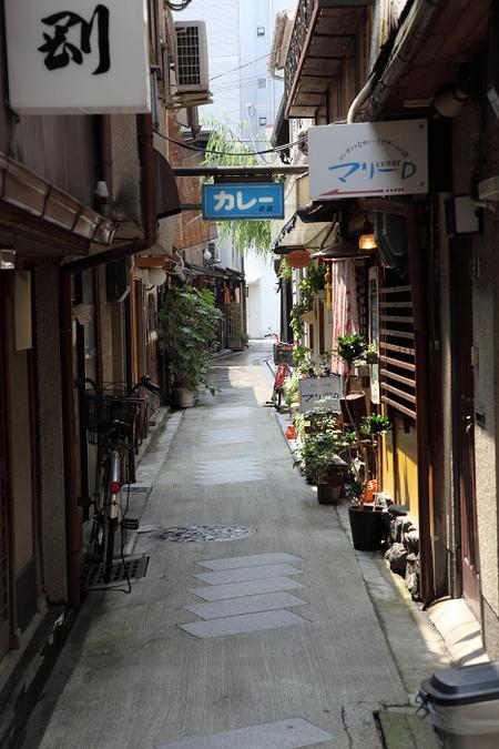 Yanagikouji1100701