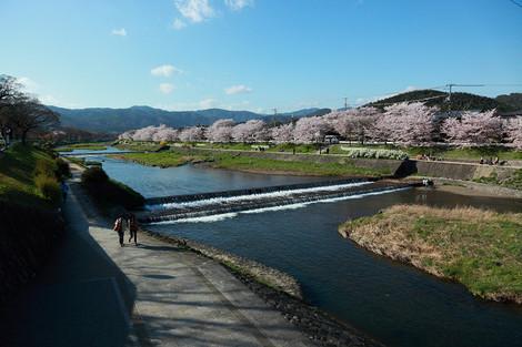 Kamogawa1204182