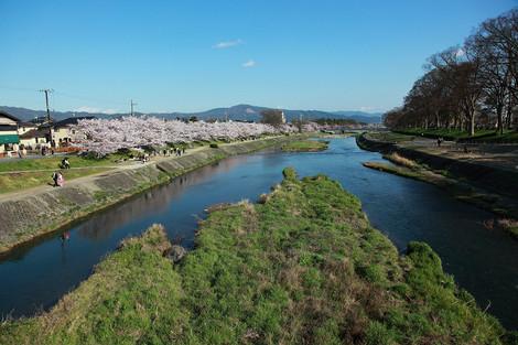Kamogawa1204185