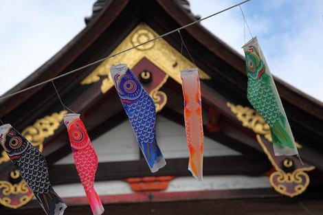 Yasakajinjya1205053