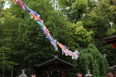 Yasakajinjya1205056
