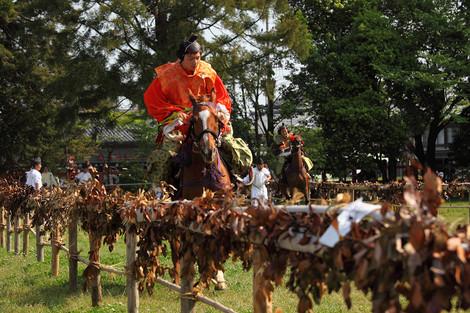 Kamokurabeuma12050710