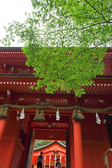 Sumiyosijinjya1208311