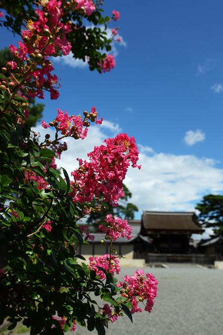 Kyotogyoen1209031