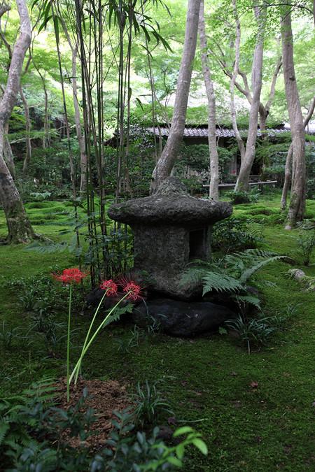 Giouji1210031