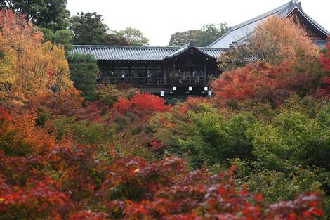 Toufukuji1211151