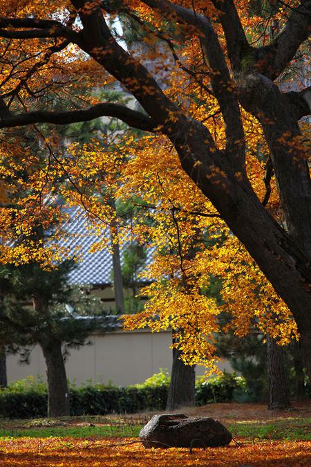 Syoukokuji1212067