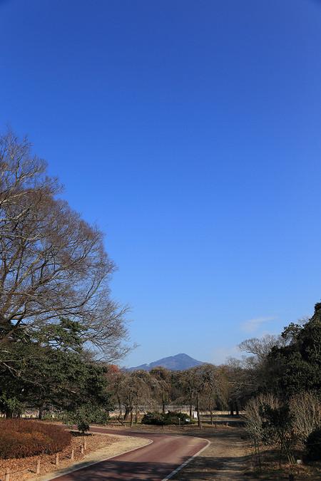 Syokubutuen1301183