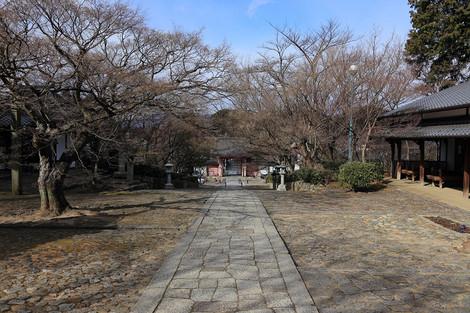 Sinnyodou1301273