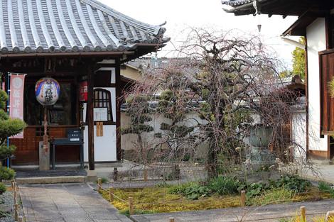 Yusyouji1303073