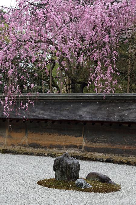Ryoanji1304125