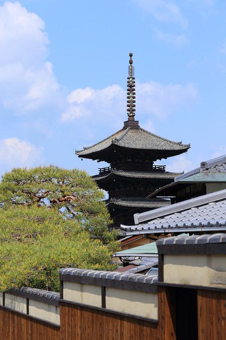 Yasakanotopu1304283
