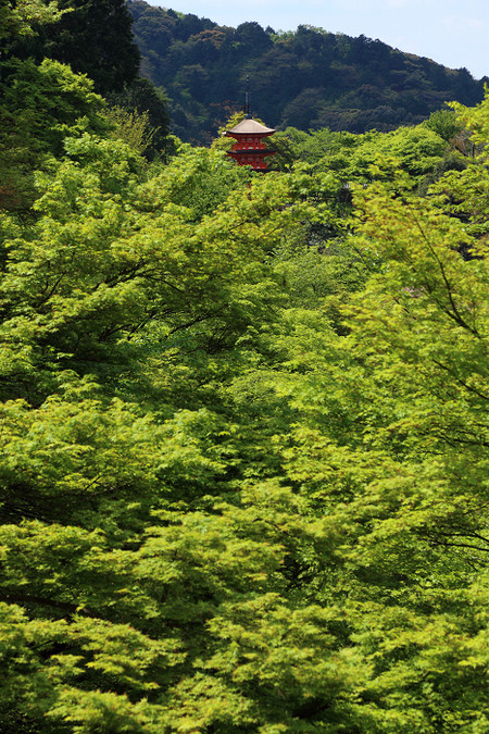 Kiyomizudera1305033