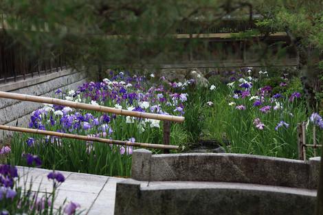 Hekiunsou1306195