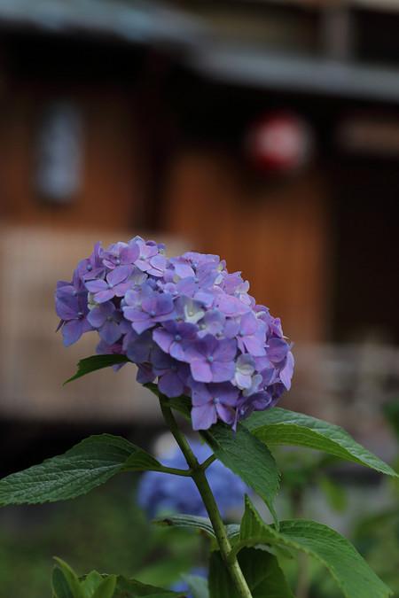 Gionsirakawa1306232