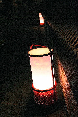 fusimihanatouro25