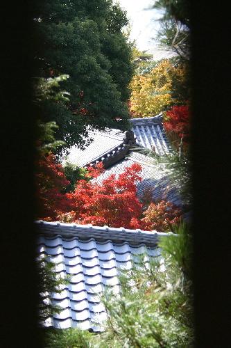 toufukuji0511178