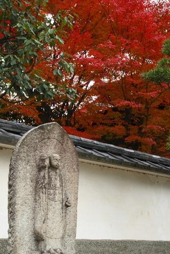 Toufukuji0612072