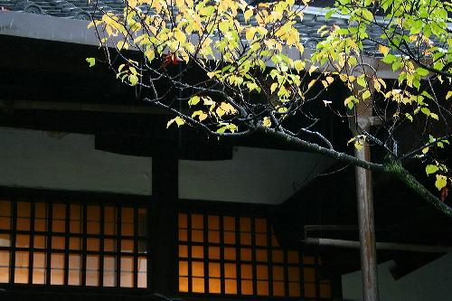 yasakajinjya051029112