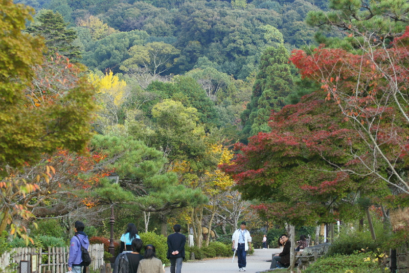 Maruyama0711151_2