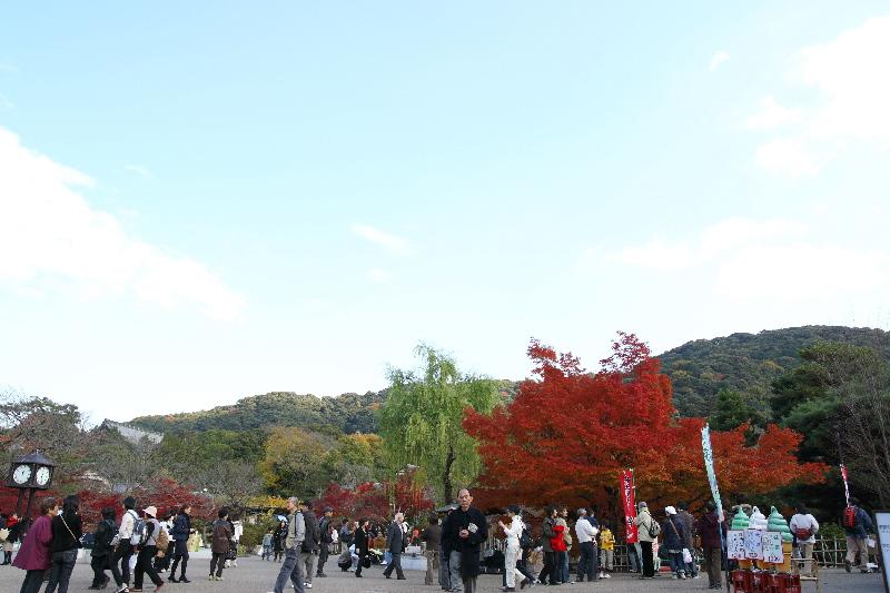 Maruyama0712031