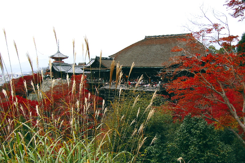Kiyomizu07120813