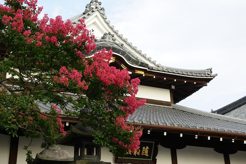 Kiyomizu0808153
