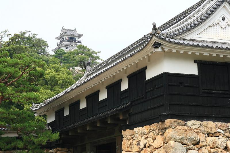 Kouchijyou0808311