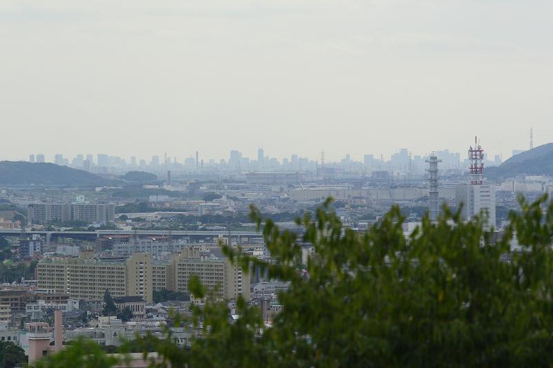 Syouhouji0809307